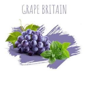 תערובת תה לנרגילה DALY Grape BRITIAN