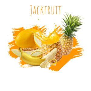 תערובת תה לנרגילה DALY jackfruit