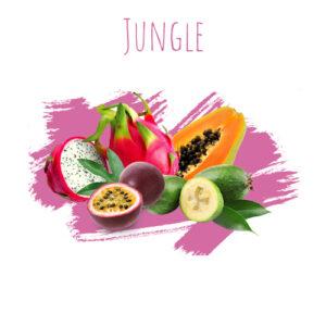 תערובת תה DALY Jungle