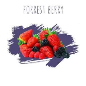 DALY Forest berry