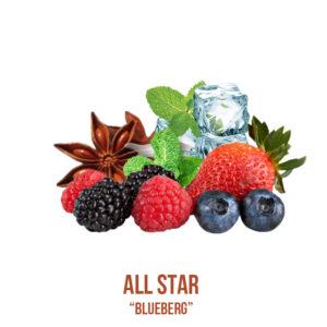 """נוזל מילוי """"ALL STAR """"Blueberg"""